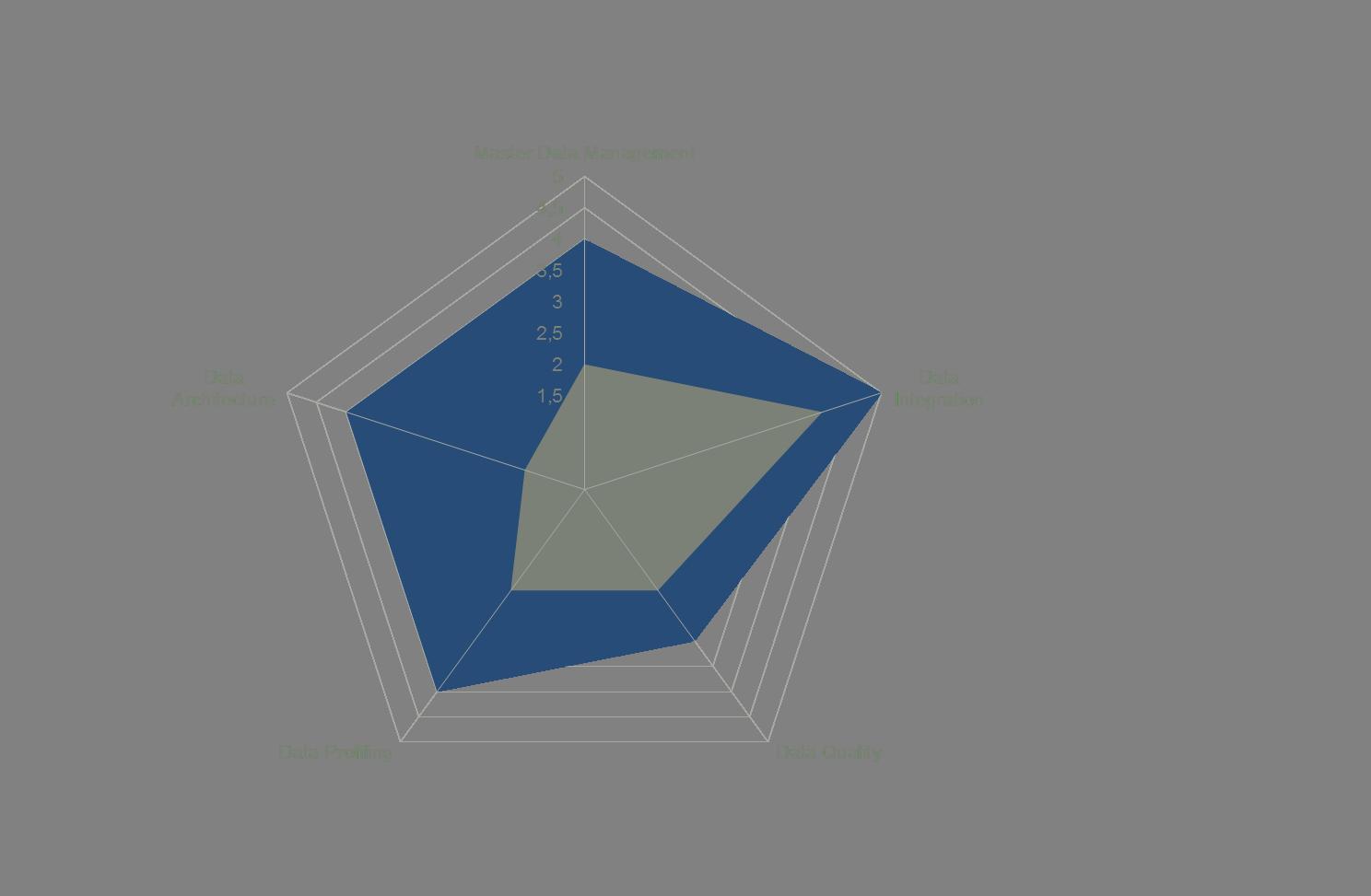 The Data Governance Spider™