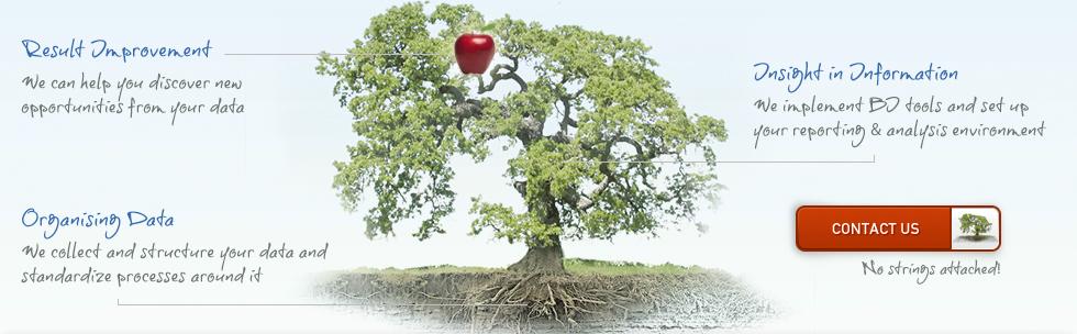 Tree of Caronne